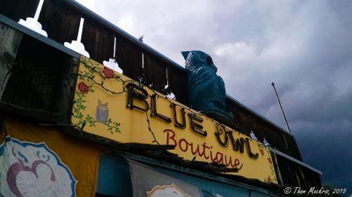 Blue Owl Books | 176 Colorado 119, Nederland CO 80466 | http://www.blueowlbooks.com/tacos-n-tunes/